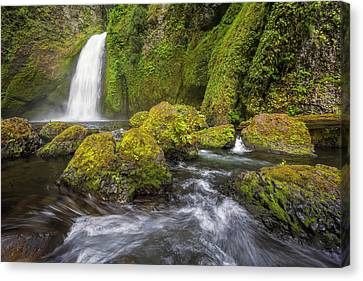 Wahclella Falls Canvas Print by David Gn