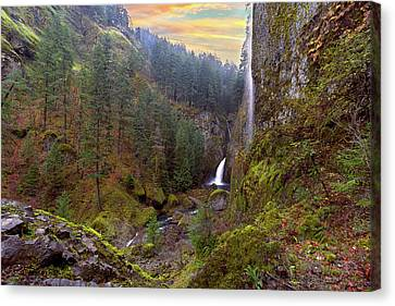 Wahclella Falls In Columbia River Gorge Canvas Print by David Gn