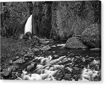 Green Lichen Canvas Print - Wahclella Falls by Jamie Pham