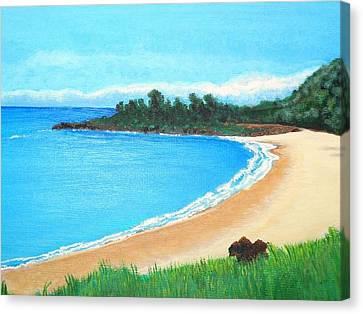 Waimea Bay Canvas Print