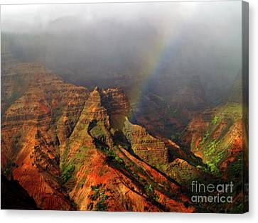 Waimea Canyon I Canvas Print by Patricia Griffin Brett