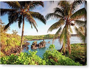 Lush Foliage Canvas Print - Wainapanapa, Maui, Hawaii by M.M. Sweet