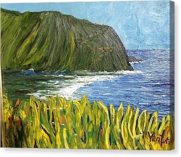 Waipio Valley Bay, Hawaii Canvas Print