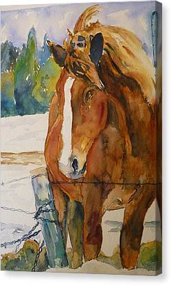Canvas Print featuring the painting Waiting For A Friend by P Maure Bausch