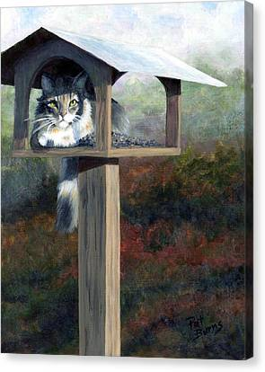 Waiting For Dinner Canvas Print by Pat Burns