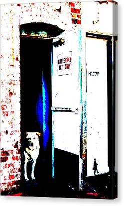 Dog At Door Canvas Print - Waiting For His Master by Michael Ledray