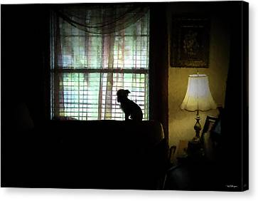 Waiting For Mama Canvas Print by Travis Burgess
