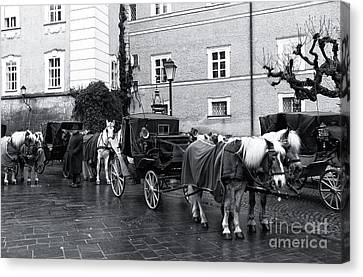 Waiting For Riders In Salzburg Canvas Print by John Rizzuto
