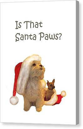 Waiting For Santa Paws Canvas Print by Joni McPherson