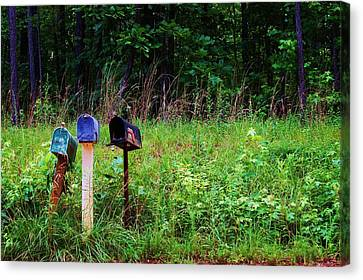 Waiting For The Mail Canvas Print by Beverly Hammond