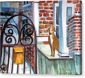 Waiting For The Mail Canvas Print by Mindy Newman