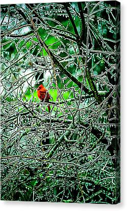 Waiting For The Thaw Canvas Print by Gerlinde Keating - Galleria GK Keating Associates Inc