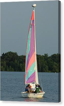 Waiting For The Wind Canvas Print by Ron Read