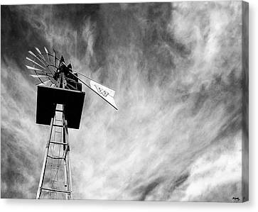 Waiting For Wind Canvas Print