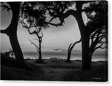 Waiting For You Driftwood Beach Jekyll Island Georgia Canvas Print by Reid Callaway