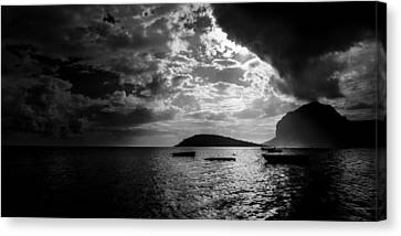 Mauritius Canvas Print - Waiting by Julian Cook