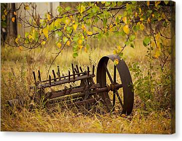 Waiting On My Other Wheel Canvas Print by Toni Hopper