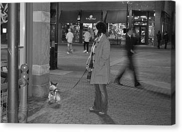 Waiting On The Dog Canvas Print by Luke Cain