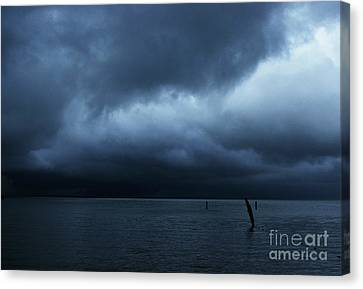 Waiting Out The Storm Canvas Print by Linda Shafer