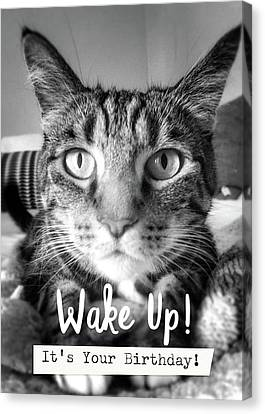 Wake Up It's Your Birthday Cat- Art By Linda Woods Canvas Print