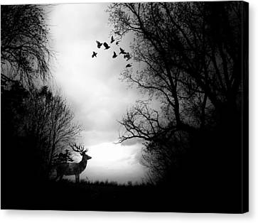 Waking From Winters Sleep Canvas Print by Michele Carter