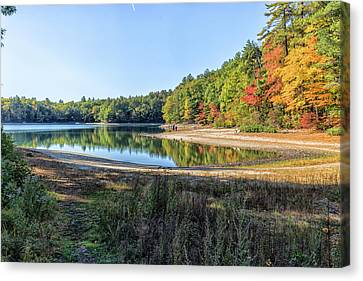Walden Pond Canvas Print by Brian MacLean