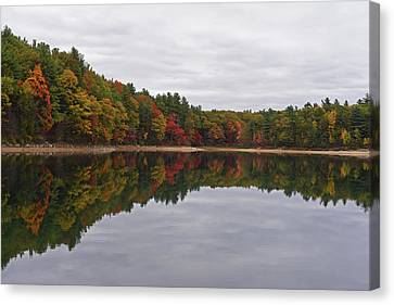 Concord Ma Canvas Print - Walden Pond Fall Foliage Concord Ma Reflection Trees by Toby McGuire