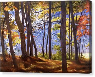 Walden Pond IIi Canvas Print by Art Chartow