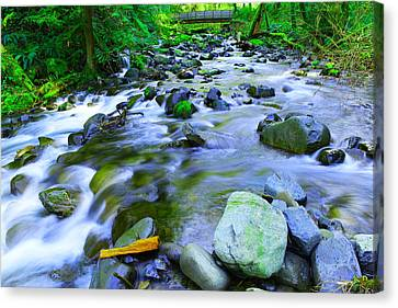 Walk Bridge Over Moffit Creek Canvas Print by Jeff Swan