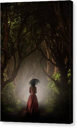 Walk In The Magic Forrest Canvas Print by Jaroslaw Blaminsky