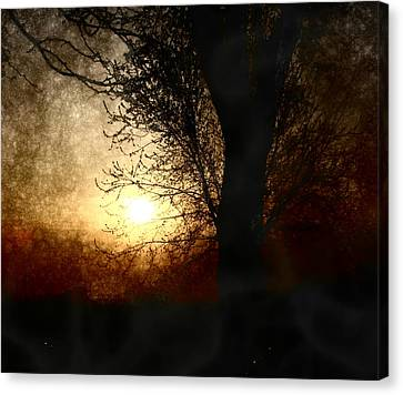 Walk Quietly Into The Night With Me. Canvas Print