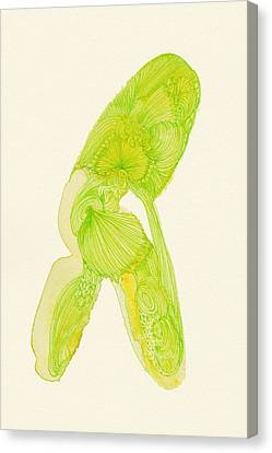 Walk - #ss14dw035 Canvas Print by Satomi Sugimoto