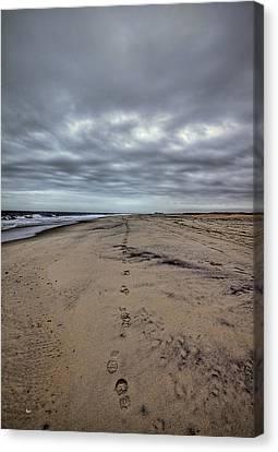 Walk The Line Canvas Print by Evelina Kremsdorf
