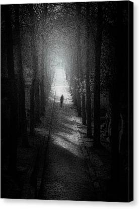 Walking Alone Canvas Print by Celso Bressan