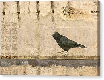 Walking Crow Canvas Print by Carol Leigh