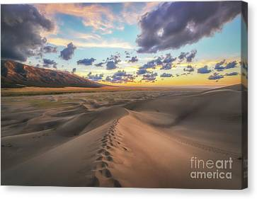 Walking On Sand  Canvas Print by Michael Ver Sprill