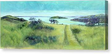 Walking Path Canvas Print by Graciela Placak