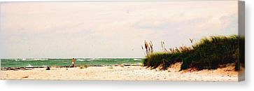 Walking The Beach Canvas Print by Ian  MacDonald