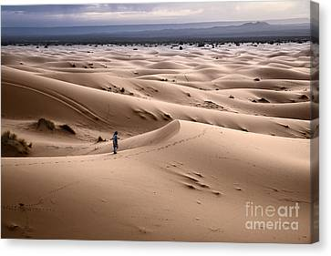 Sand Dunes Canvas Print - Walking The Desert by Yuri Santin