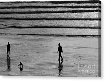 Canvas Print featuring the photograph Walking The Dog At Marazion by Brian Roscorla