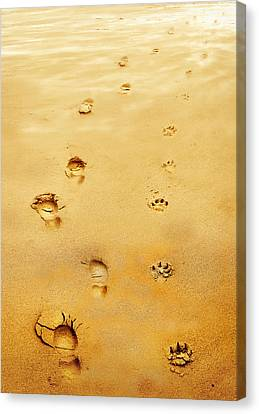 Walking The Dog Canvas Print by Mal Bray