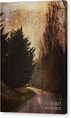 Walking The Dog Vi Canvas Print by Robert Brown
