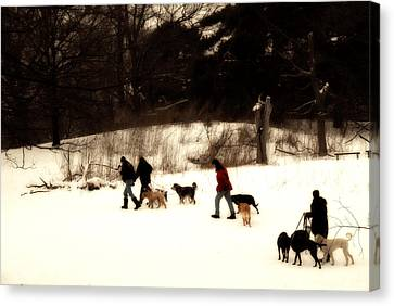 Walking The Dogs Canvas Print by Cabral Stock