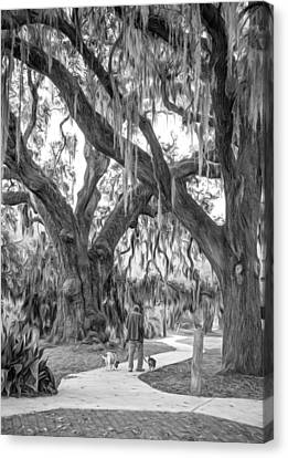 Walking The Dogs In New Orleans - Paint Bw Canvas Print by Steve Harrington