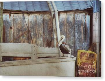 Canvas Print featuring the photograph Walking The Plank by Benanne Stiens
