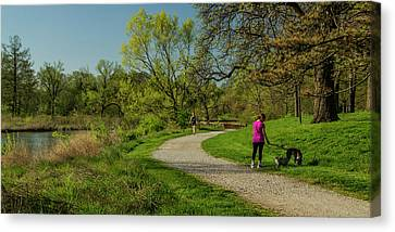 Walking The Savanna Boardwalk Trail In Forest Park Canvas Print by Garry McMichael