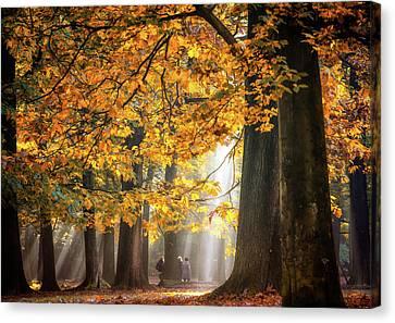 Walking Under The Autumn Lights Canvas Print by Fabrizio Micciche