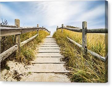 Walkpath To The Beach Canvas Print by Enrico Della Pietra