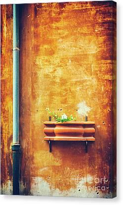 Wall Gutter Vase Canvas Print