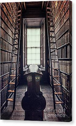 Library Canvas Print - Walls Of Books by Evelina Kremsdorf